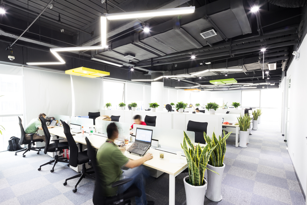 How Can Greenery Help To Boost Office Productivity?